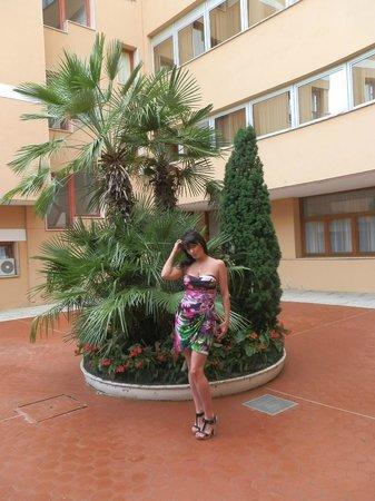 Radisson Blu Resort, Terme di Galzignano – Hotel Sporting: Внутренний дворик