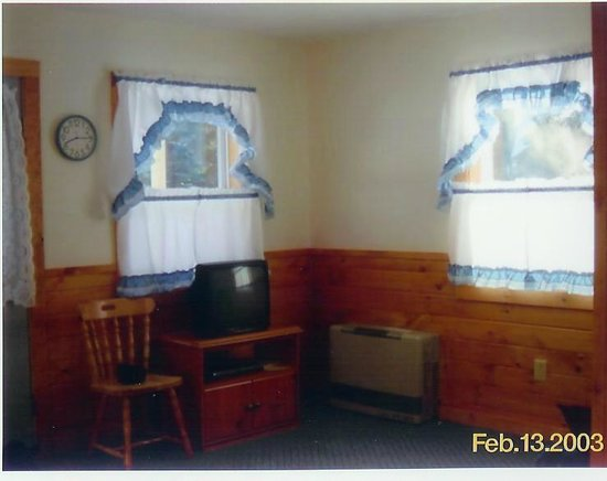 The Great Northwoods Get-A-Way: Living area