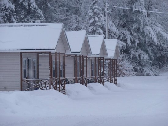 The Great Northwoods Get-A-Way : Winter wonder land