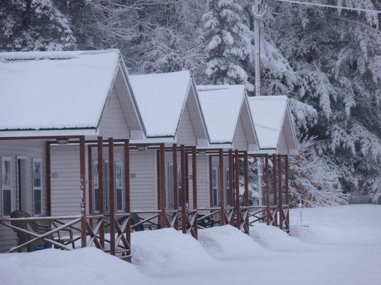 The Great Northwoods Get-A-Way : 4 beautiful cabins