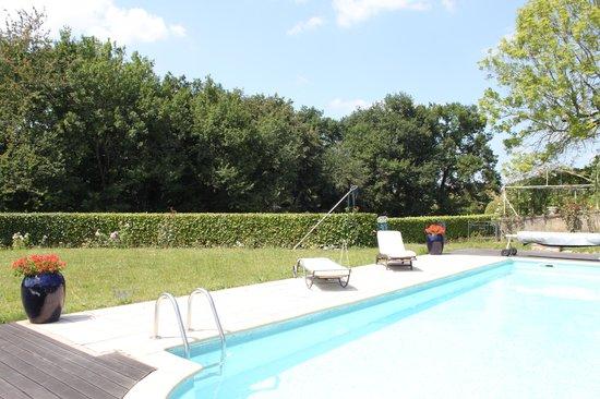 Maison d'Hotes Aux-Forets: La piscine