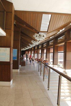 Hotel Arkada: Reception area