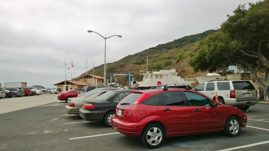 Another shot of the Fat Cats parking lot