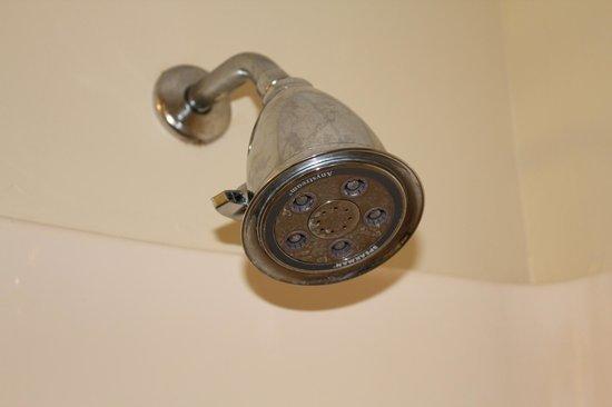 Coastal Palms Inn & Suites : leaking shower head