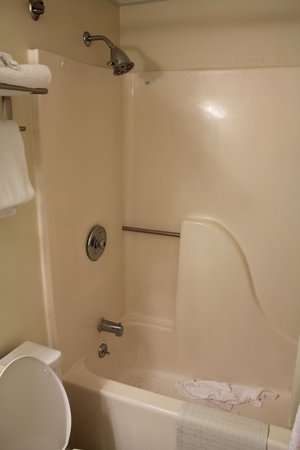 Coastal Palms Inn & Suites: shower