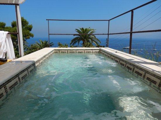 Villa Marina Capri Hotel & Spa: piscine privée