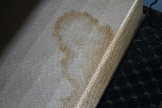 Coastal Palms Inn & Suites : stains on matress