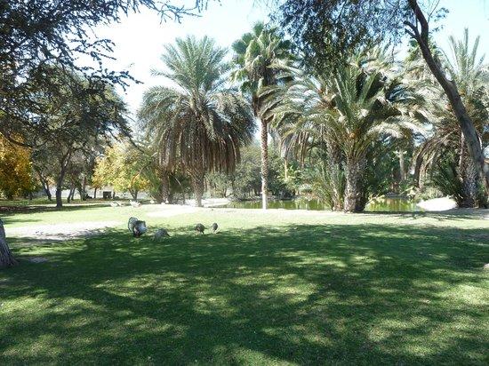 Hotel Las Dunas: Hotel grounds