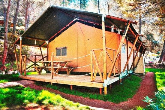 Camping Village Le Pianacce 사진