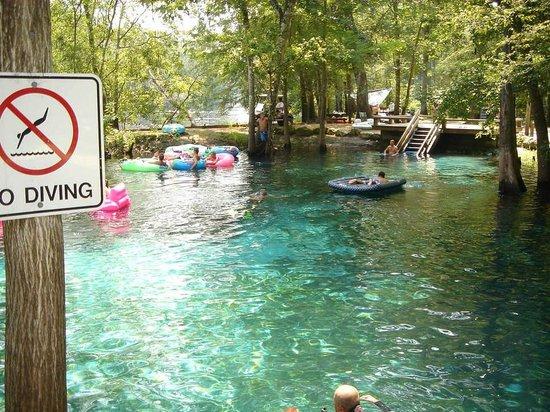 Ginnie Springs : Diversão garantida