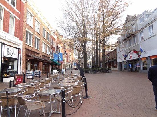 University of Virginia: Downtown
