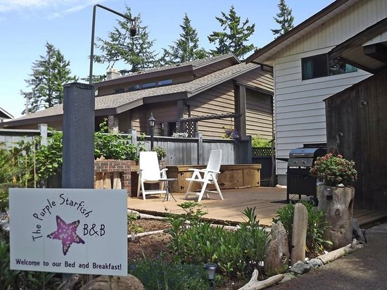 The Purple Starfish B&B : Our sundeck