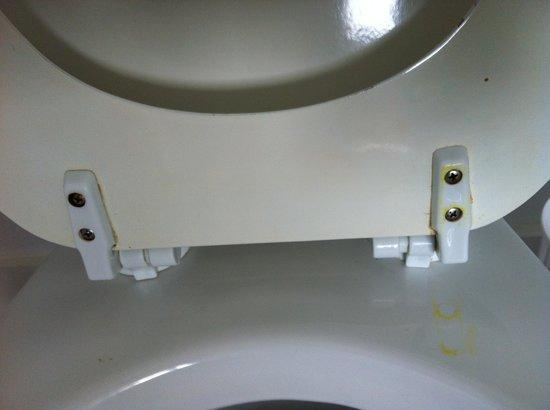 Winelodge Hotel : Toilet