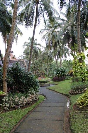 Hotel Aryaduta Lippo Village: Garden