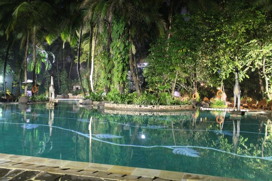 Hotel Aryaduta Lippo Village: Pool@Night
