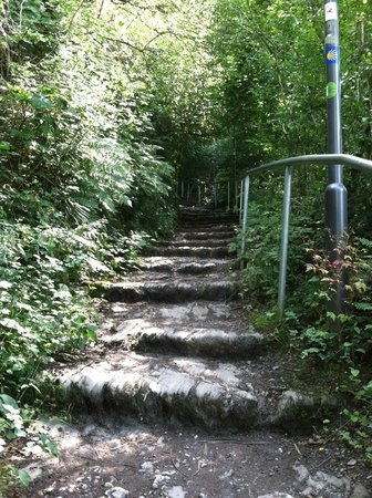 Hotel Bacharacher Hof: Part of the trail to the castle.