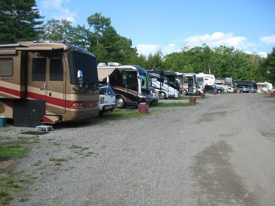 Shore Hills Campground : Deer Run area between #140 - #132