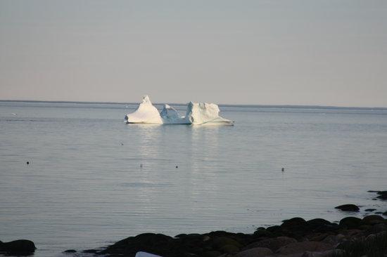Forteau, Kanada: Iceberg Labrador Straits 2013