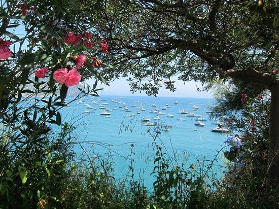 Giardini Termali Aphrodite: В выходные более 200 яхт в бухте