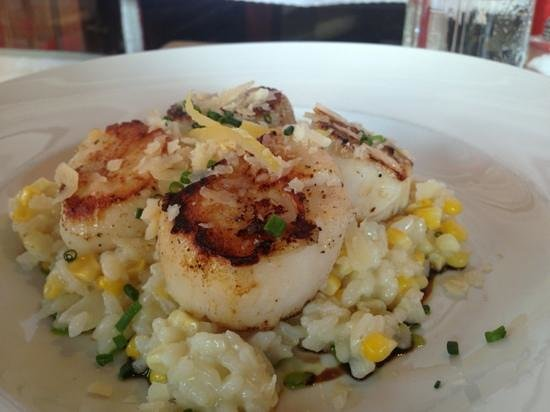 The Red Cat Kitchen at Ken N' Beck: scallops with risotto