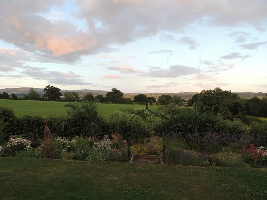 Shropshire Hills Bed and Breakfast: view from our room, early evening.