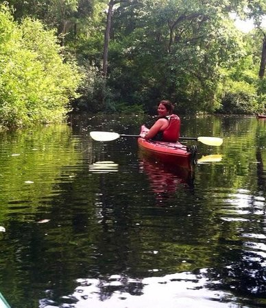 Savannah Canoe and Kayak : Ebenezer Creek