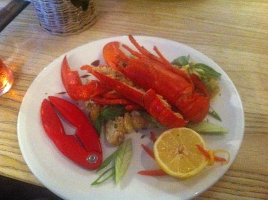 The Anglesey Arms Hotel: Fresh lobster specials dish, so tasty!!