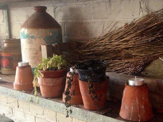 Rustic feel picture of hall woodhouse bath tripadvisor for 64 rustic terrace bristol ct