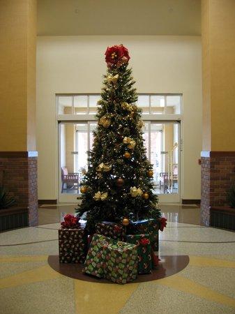 Hilton Garden Inn Yuma Pivot Point: Festive decorations in entryway