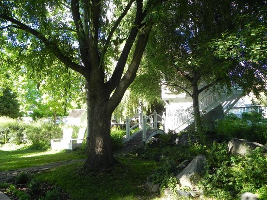Lithia Springs Resort : Beautiful spots for reading