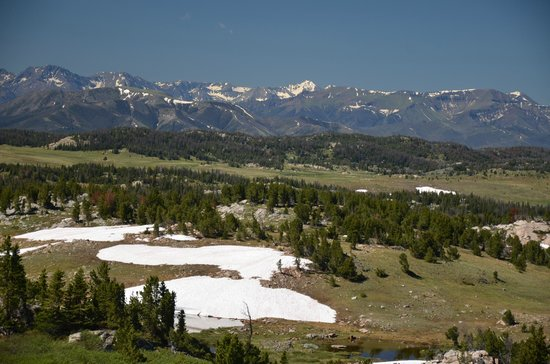 Skyline Guest Ranch and Guide Service: View from Beartooth Highway