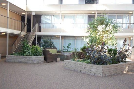 Skyline Hotel & Waterpark : la patio