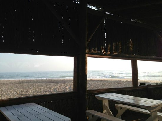Tiger Reef Beach Bar & Grill: Seaview