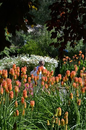 Reverie Winery: Gardens
