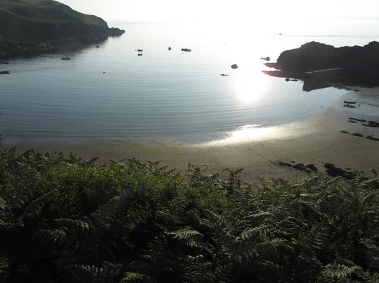 Bolberry Down: evening Hope Cove