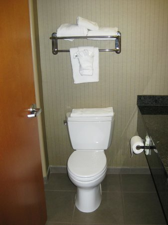 Holiday Inn Express Hotel & Suites Grand Junction: Small bathroom
