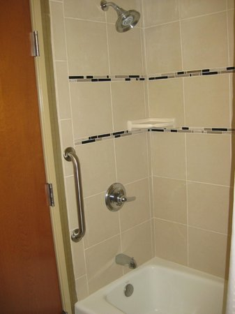 Holiday Inn Express Hotel & Suites Grand Junction: Shower with handle