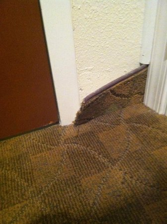 Holiday Inn Staunton Conference Center: Carpet peeling away from the wall in our room.
