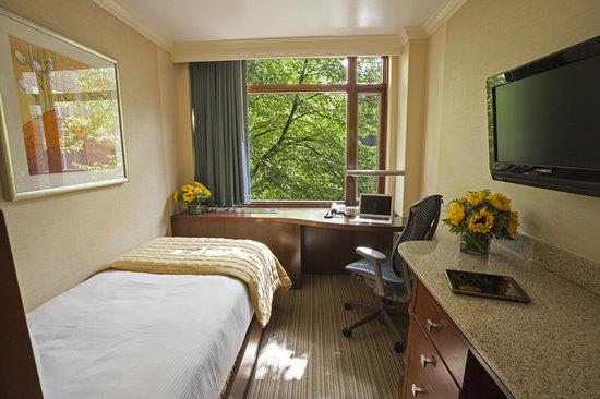 Q Center: Standard Guest Room
