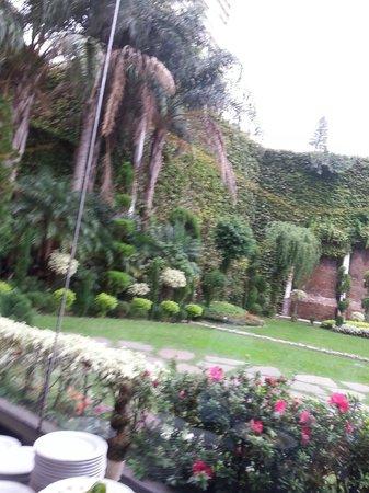 Emperador Hotel Buenos Aires: Vista Jardim