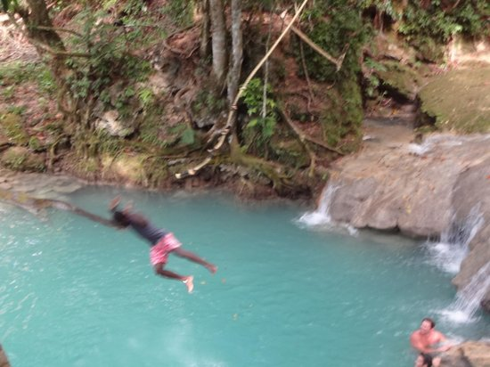 El Sol Vida - Day Tours: Island Gully Falls