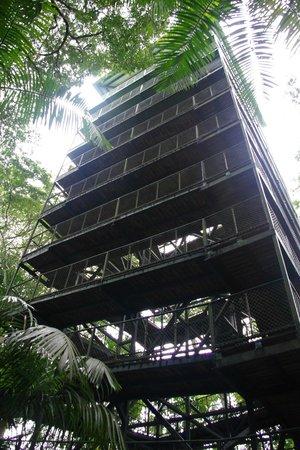 Gamboa Rainforest Resort - Torre observacion