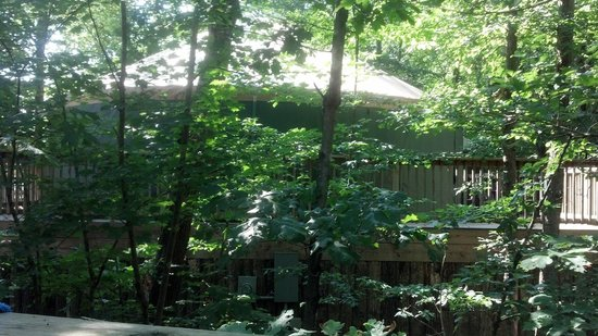 Shenandoah Crossing: Neighbors Yurt