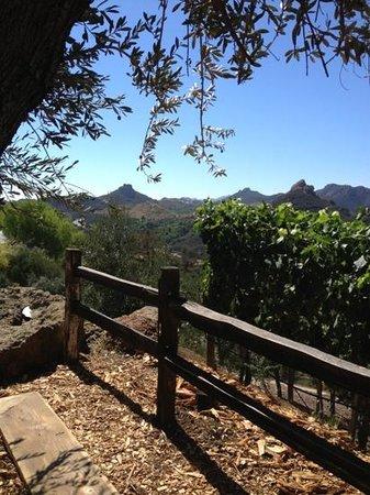 Hidden Malibu Wine Country Tours: Cielo Winery in Malibu, CA
