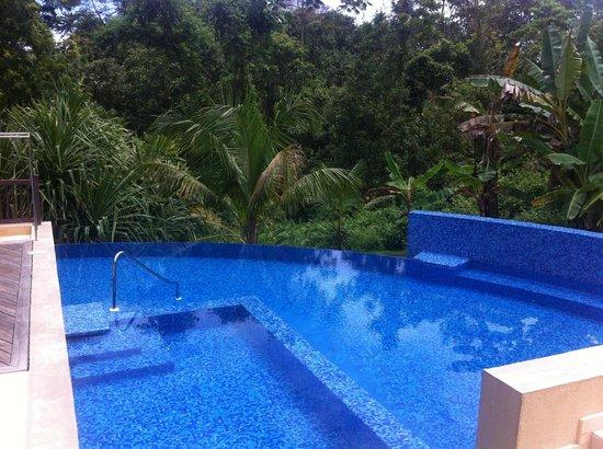 Red Frog Beach Island Resort & Spa : una piscina de ensueño