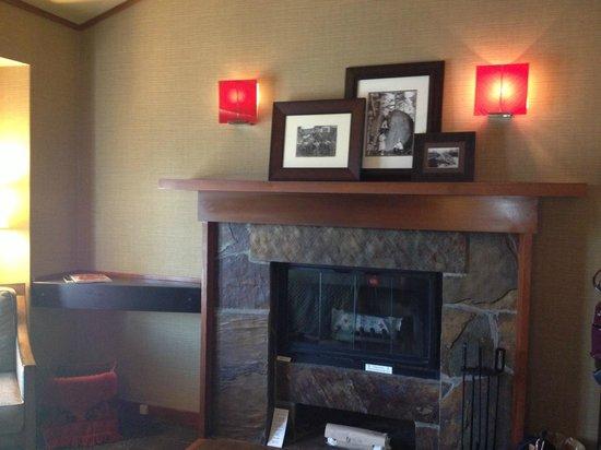 Salish Lodge & Spa: wood burning fireplace