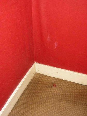Hotel Astoria : Carpete e parede na entrada do quarto