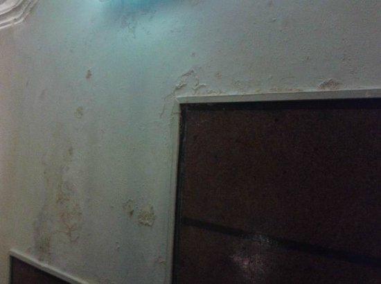 Hotel Astoria : Parede do corredor/escada