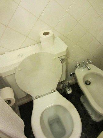Hotel Astoria : Banheiro do quarto