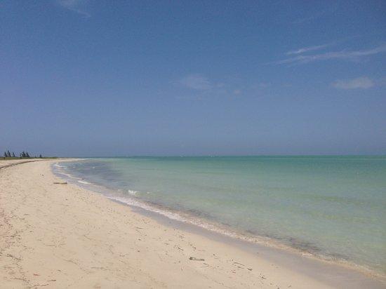 Blau Privilege Cayo Libertad Hotel: Playa